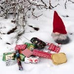 Dear Santa– En dikt av Ylva Kristina Larsson